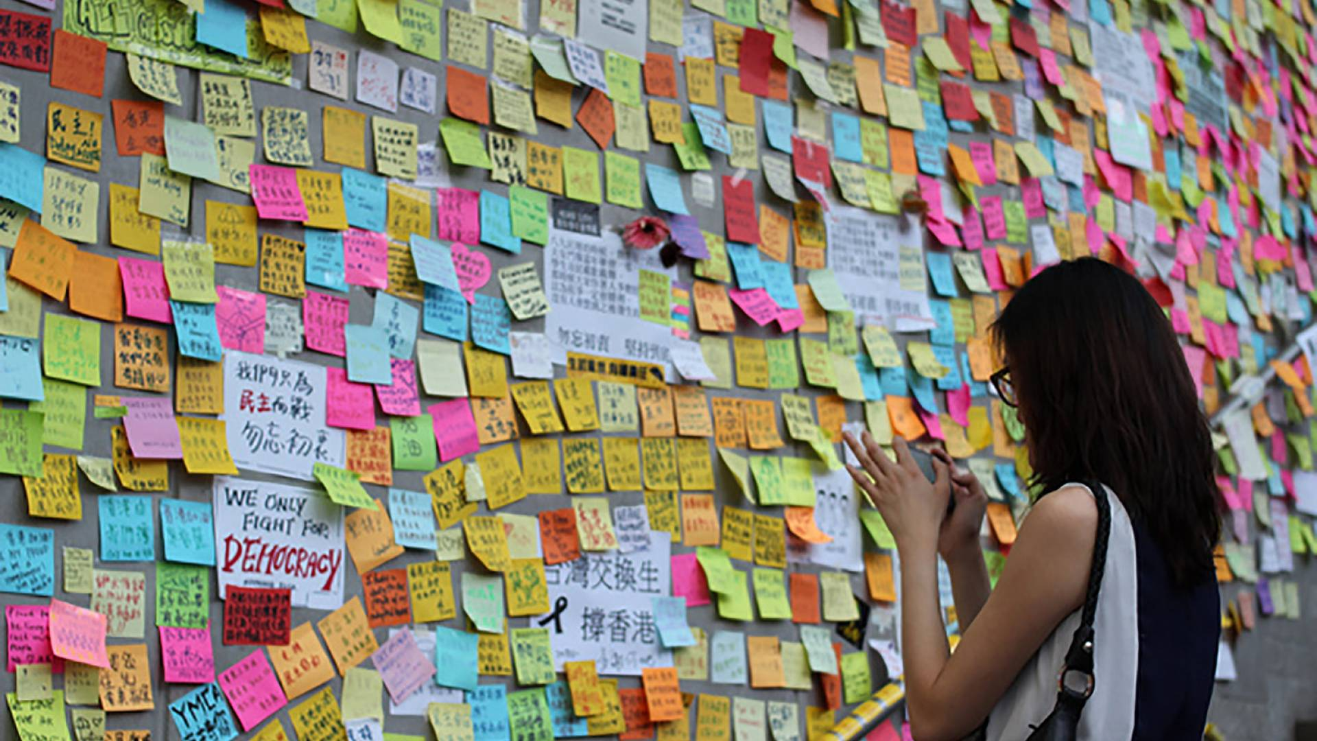 A person in front of a wall of pro democracy post-its